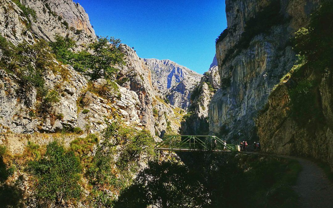 Asturias, playa y montaña